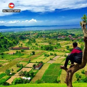 Bukit-Belong-Bali Travel Expert