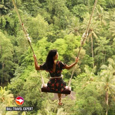 Village Swing swinger