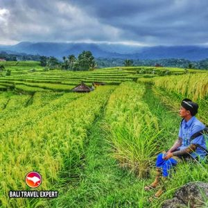 Spending 3 days in Bali Tours - Bali Travel Expert