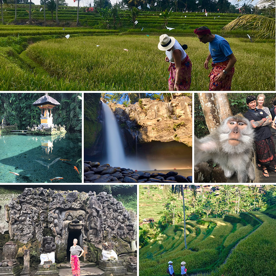 Ubud Private Day Tour